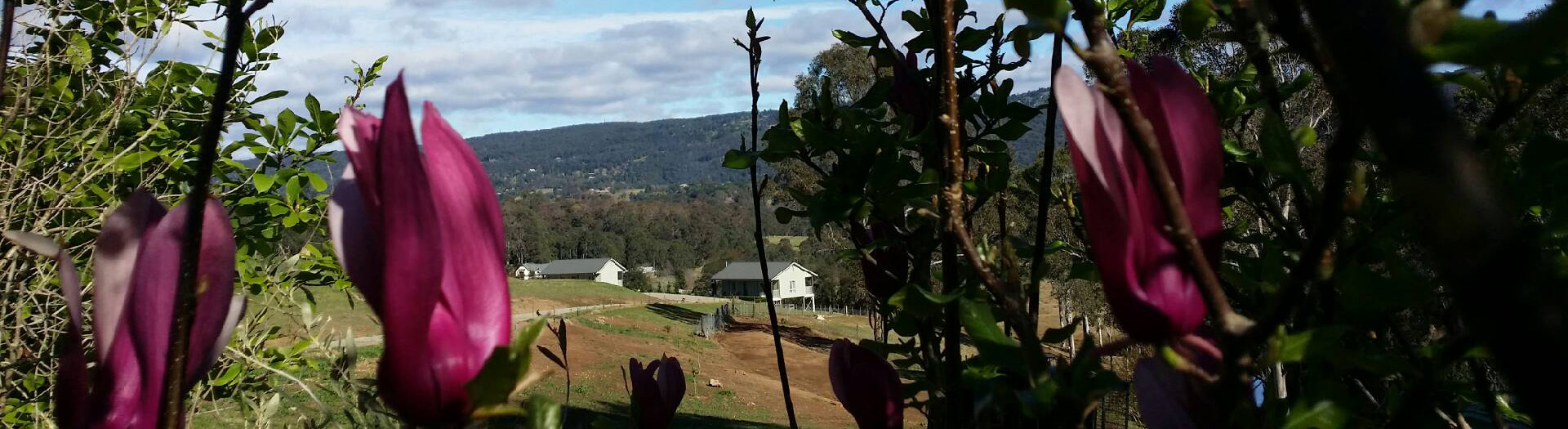 Magnolia View of Highfields Country Cottages
